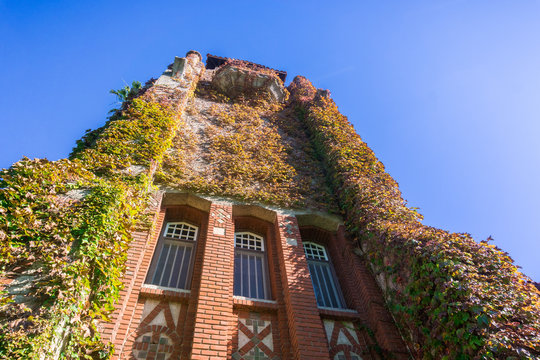 Looking up at the ivy covered tower at the San Jose State University; San Jose, California