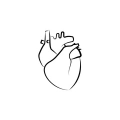 Heart, Organ icon. Element of biology icon for mobile concept and web apps. Hand drawn Heart, Organ icon can be used for web and mobile