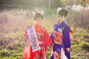 Two girls wearing kimonos in the thin and wild plants of autumn