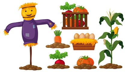 Set of farm product