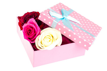 Petals and heads of roses in square gift box