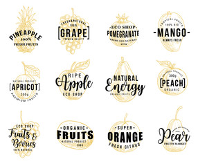 Fruits and berry lettering icons