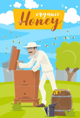 Honey farm. Beekeeper and hive at apiary