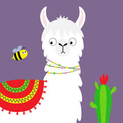 Llama alpaca face, bee, cactus. Childish baby collection. Cute cartoon funny kawaii character. Fluffy hair fur. T-shirt, greeting card, poster template print. Flat design. Violet background.