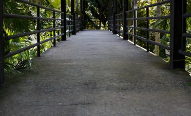 pathway in pattaya national park