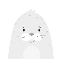 Seal baby print. Cute animal. Cool sea calf illustration
