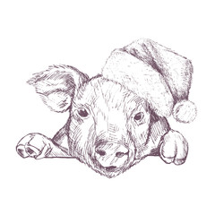 Christmas poster with image a pig portrait in Santa's hat. Vector illustration.