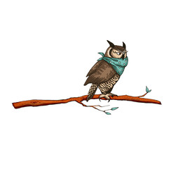 Owl at night sit on a tree branch. Vector illustration with a bird in cartoon style.