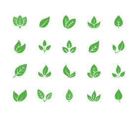Leaf flat glyph icons. Plant, tree leaves illustrations. Signs of organic food, natural material, bio ingredient, eco emblem. Solid silhouette pixel perfect 64x64.