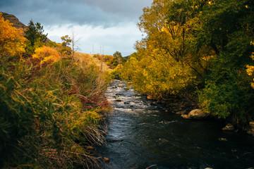 Mountain waterflow in autumn trees