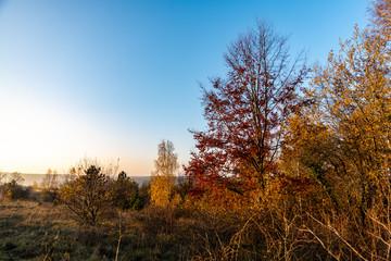 Couleurs d'automne en fin de journée