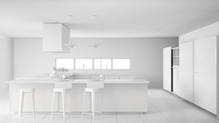 Total white project of minimalistic professional modern kitchen with accessories, contemporary interior design