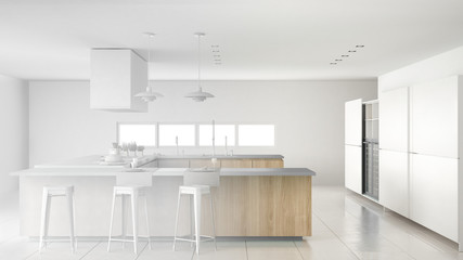 Unfinished project of minimalistic professional modern wooden kitchen with accessories, contemporary interior design