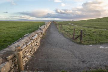 Farmer's path in Ireland