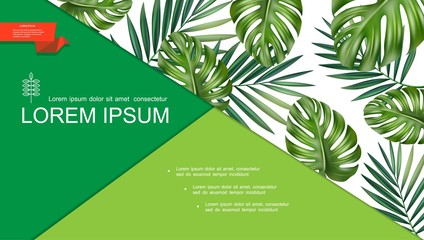 Wall Mural - Realistic Green Tropical Plants Template