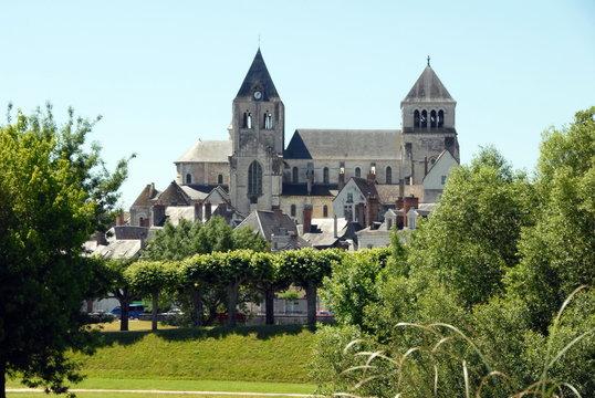 Collégiale Saint-Aignan, verdure en premier plan, ville de Saint-Aignan-sur-Cher, Loir et Cher, France