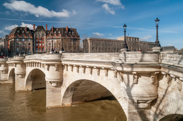 Beautiful view of the Pont Neuf in Paris, France, on a sunny day