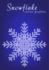 Snowflake. Christmas and winter theme.