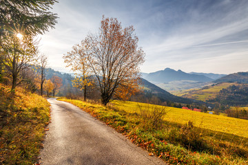 A narrow road through an autumn landscape with mountains at sunrise. Mala Fatra National Park, not far from the village of Terchova in Slovakia, Europe.
