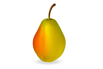 Realistic 3d pear, latin name Parus, varieties of Early on a white background with realistic shadows. Vector illustration.