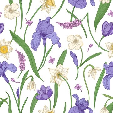 Botanical seamless pattern with seasonal blooming flowers on white background