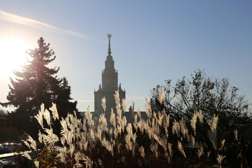 Moscow State University silhouette in sunlight, beautuful view of main building. Moscow landmark, education in Russia