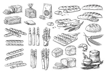 collection of natural elements of bread and flour sketch vector illustration