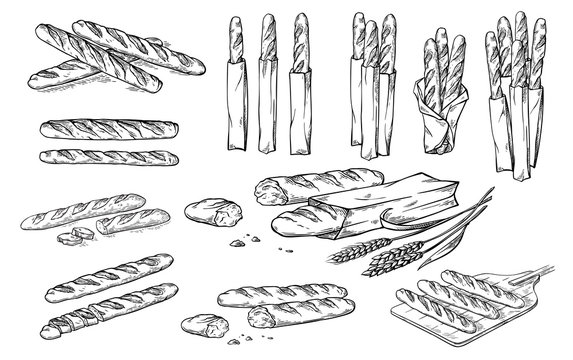 collection of natural elements of bread and flour sketch