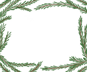 Realistic Hand Drawn Pine Boughs Frame