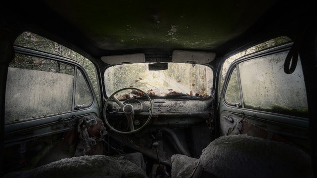 Old car, abandoned in the forest. Dead birch leaves on the windshield.