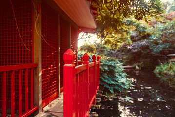 Close up red wooden house in japanese style garden, park with pond and autumn trees. Traditional japan architecture. Exterior design, outdoor decor. Relax and mind calm concept. Copy space.