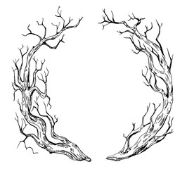 Wreath with old tree trunks. Hand drawn illustration converted to vector