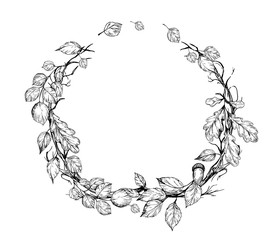 Floral wreath with tree leaves. Hand drawn illustration converted to vector