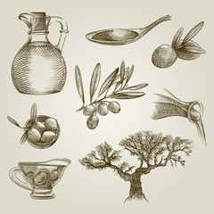 Set of Hand Drawn olive elements. Collection Of olives and olive oil illustrations. Olive elements Sketches isolated on white background.