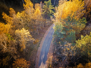 Aerial view of autumn forest with a road. Captured from above with a drone