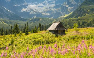 Hala Gasienicowa, Tatra mountains Zakopane Poland