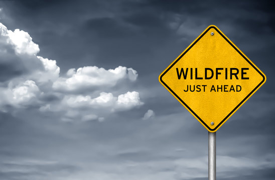 Wildfire - just ahead road sign