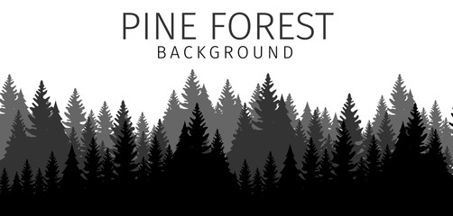 Vector Illustration Cartoon Pine Forest Background