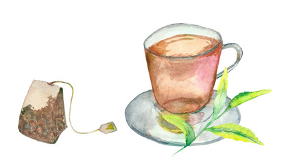 Watercolor tea Cup, tea bag and green tea leaves on white background for beautiful design and decoration, green tea Bud and fresh leaves.
