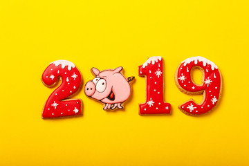 New year gingerbread with icing. Pig 2019 cookies