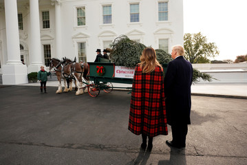 Christmas tree arrives at the White House in Washington