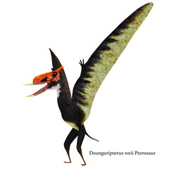 Dsungaripterus Pterosaur Standing with Font - Dsungaripterus was a Pterosaur raptor bird that lived in China during the Cretaceous Period.