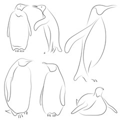 Set of black line penguins on white background. Sketch style Vector graphic icons animal.