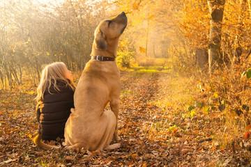 Beste Freunde Kind und Hund sitzen glücklich im leuchtenden Herbstwald und schauen fallenden Herbstblättern nach
