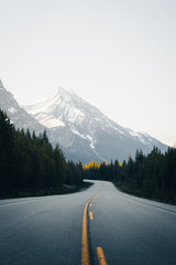 Canadian rockies road leading to mountains