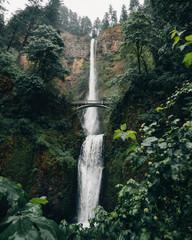 Multnomah falls green leaves after rain
