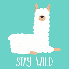 Vector illustration of a white llama or alpaca with the inscription Stay wild on a blue background. The image on the South American theme for children, cards, invitation, print for clothing, textiles.