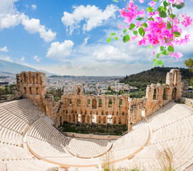 Fototapete - view of Herodes Atticus amphitheater of Acropolis with flowers, Athens, Greece