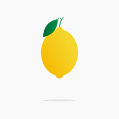 Yellow juicy lemon with a slice of lemon on the isolated white background.Vector illustration of ripe lemon. Hand drawn fruit. Citrus. Healthy food. Vitamin C.