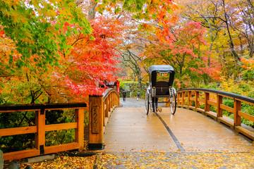 秋の黒門橋と人力車
